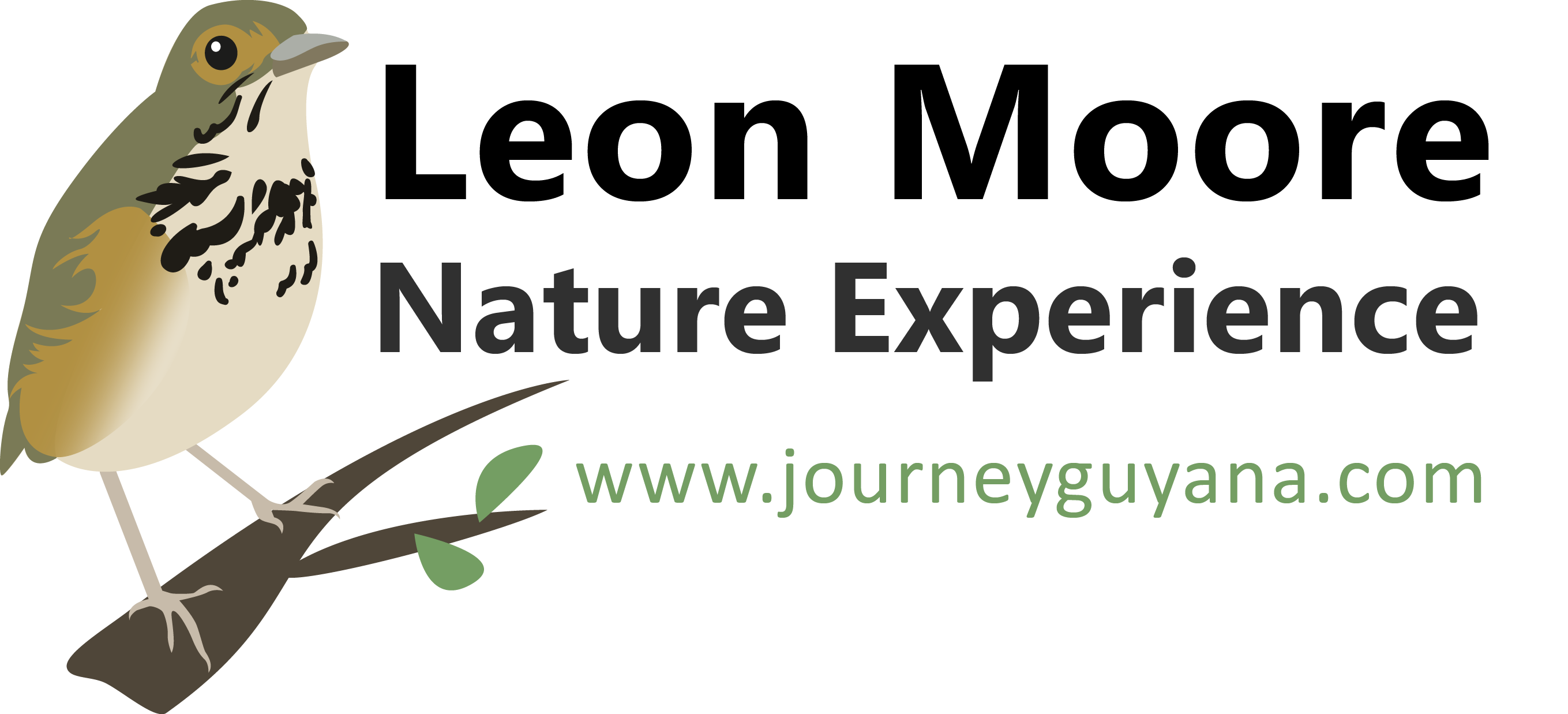 Leon Moore    Nature Experience